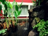 Koi pond and waterfall outside the Mauka room