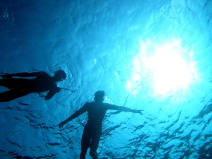 Spearfishing on the West side